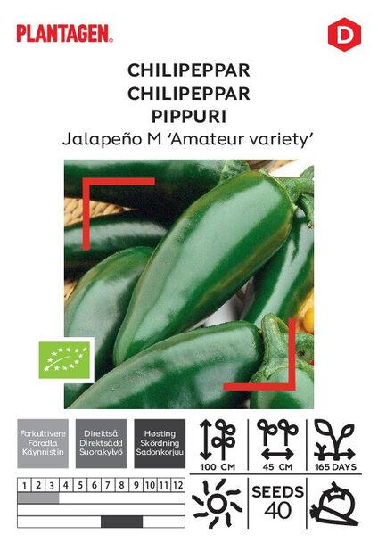 Meksikansk chili Jalapeño