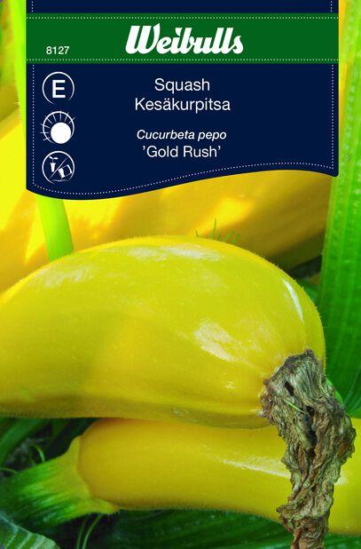 Squash Golden Rush