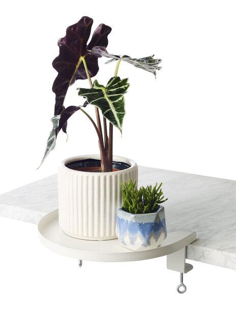 Monterbart brett Dalia , Lengde 30 cm, Hvit