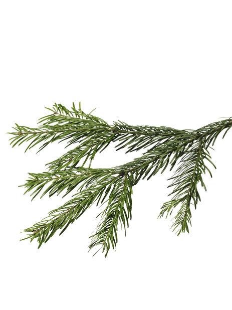 Nordmannsgran i potte, Høyde 130 cm, Grønn