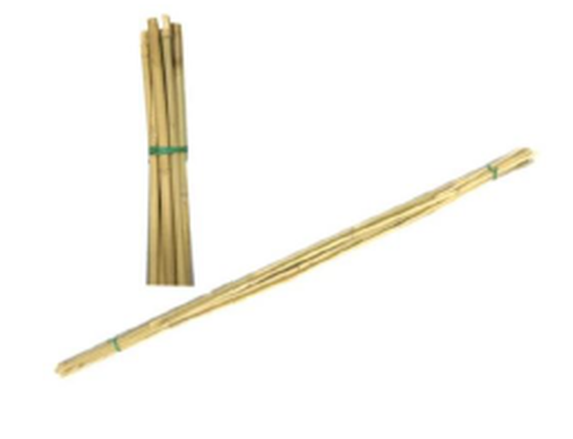 Bambuspinne 120 cm 5 stk