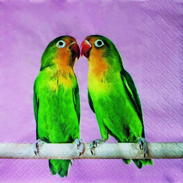 Servietter papegøye, Bredde 33 cm, Rosa