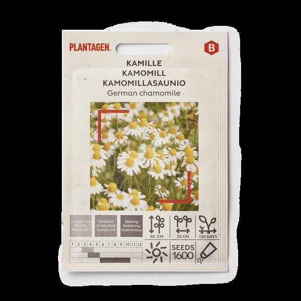 Kamille 'German'