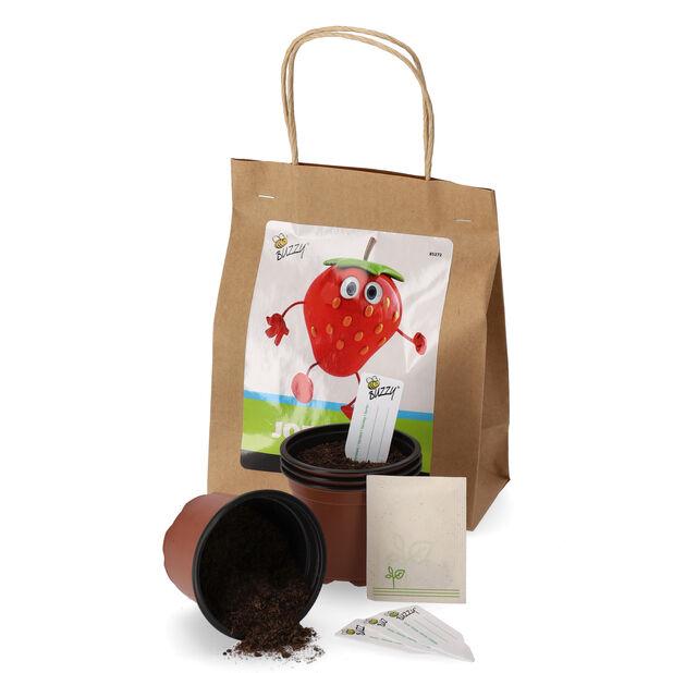 Dyrkesett Buzzy Jordbær, Brun