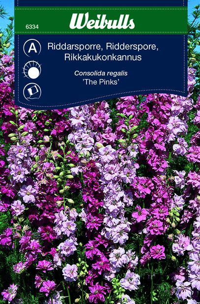 Ridderspore 'The Pinks'