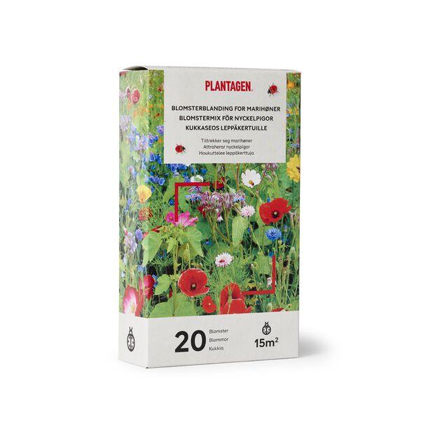 Blomsterblandning for marihøner, 15 m2, Flerfarget