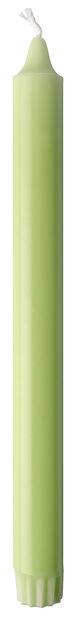 Kronelys, Høyde 25 cm, Grønn