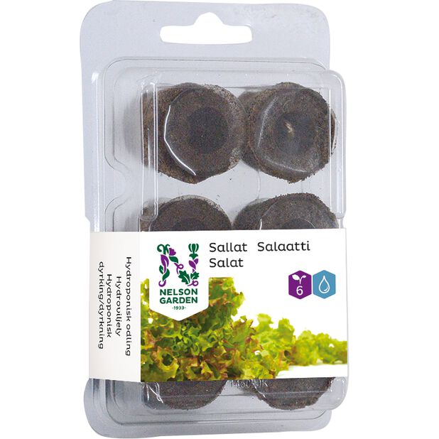 Hydroponisk planteplugg salat, 6 pk, Flerfarget