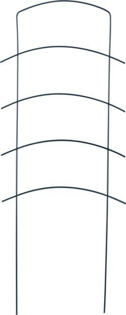 Espalier Ortus, Høyde 58 cm, Grønn