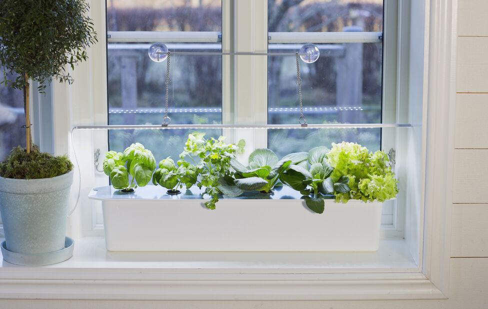 Plantelys LED No.1, Lengde 80 cm, Hvit