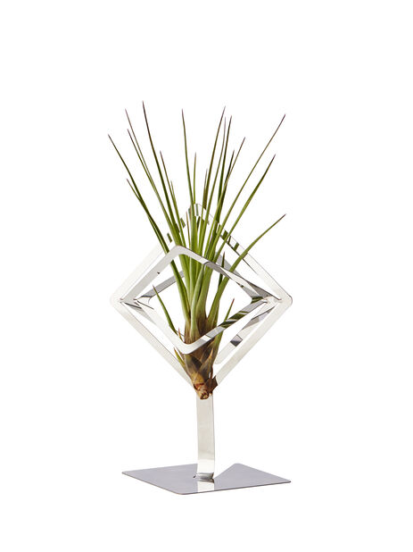 Holder airplants Sam, Høyde 15.5 cm, Sølv