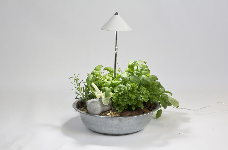 Plantebelysning Sunlite for potte, Høyde 100 cm, Hvit