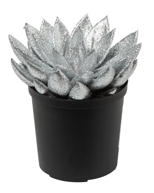 Rosetturt 12 cm  sølv