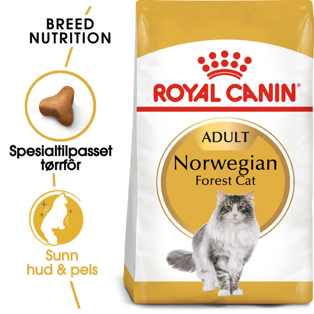 Norwegian Forest Cat  2kg, 2 kg