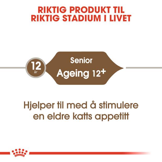 Ageing+12 2 kg, 2 kg